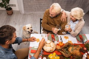A Simple Thanksgiving Guide for Your Dog