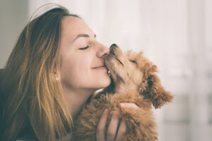 When Is the Right Time to Adopt a Dog?